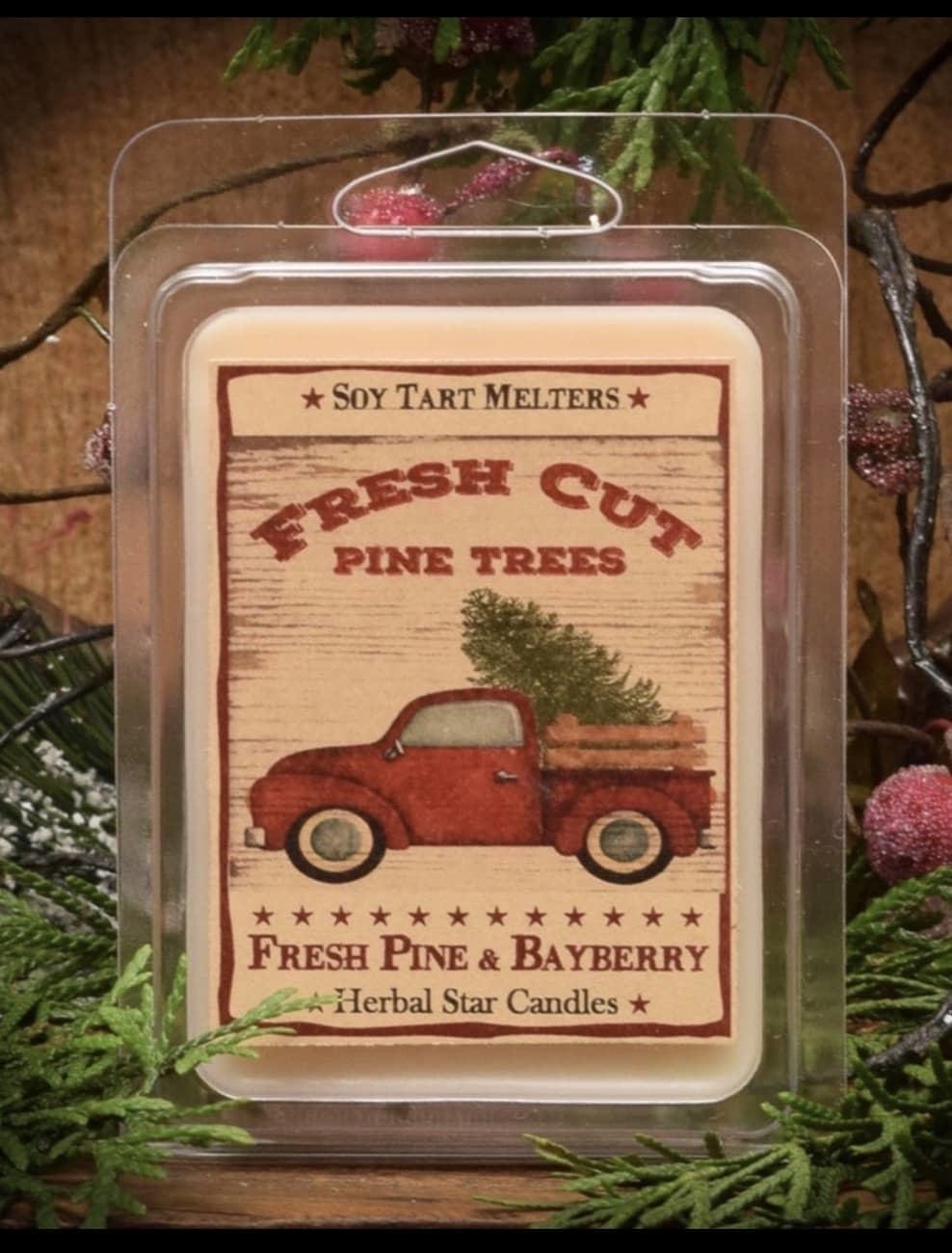 Herbal Star Candles Fresh Cut Pine Trees Fresh PIne & Bayberry  Mini Pack of Tarts