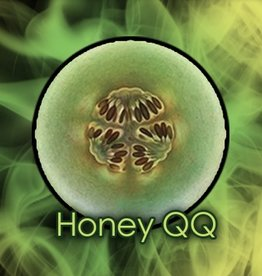Honey QQ
