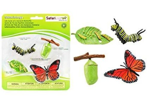SAFARI LTD Life Cycle of a Monarch Butterfly *