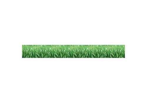 Trend Enterprises Discovery Trim - grass
