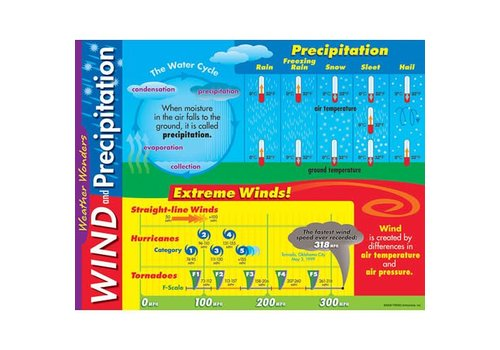 Trend Enterprises Wind and Precipitation poster