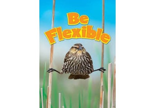 Trend Enterprises Be Flexible poster