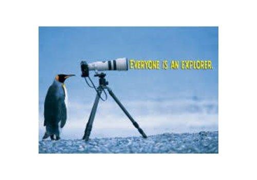 Trend Enterprises Everyone is an Explorer Poster
