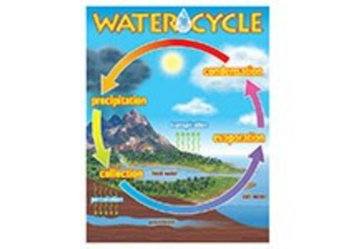 Trend Enterprises The Water Cycle Poster*