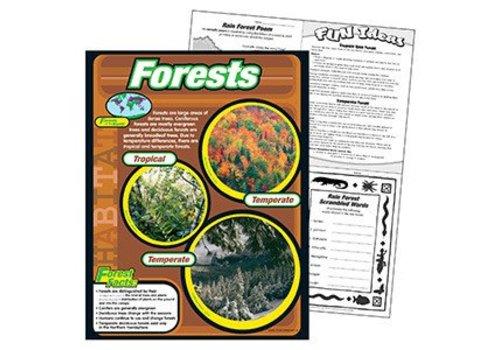 Trend Enterprises Forests Poster*