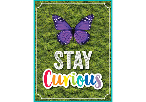 Carson Dellosa Woodland Whimsy - Stay Curious Chart