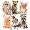 """Carson Dellosa Woodland Whimsy Animal Cut Out 6"""" *"""