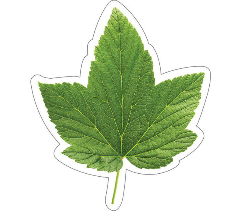 Woodland Whimsy Green Leaf Cut-Outs *