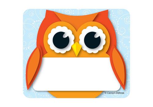 Carson Dellosa Colorful Owl Name Tags
