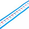 Carson Dellosa -20 to 20 Student Number Lines *