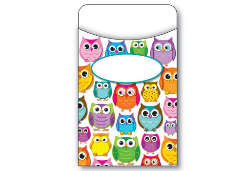Carson Dellosa Colorful Owls Library Pockets