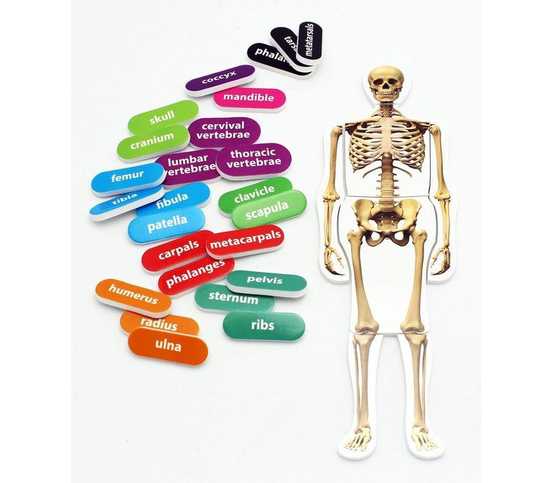 Foam Manipulatives Human Skeleton Puzzle *