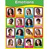 Carson Dellosa Emotions Chart *