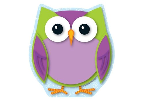 Carson Dellosa Colorful Owl Notepad