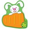 Carson Dellosa Bunny Carrot Notepad * (D)