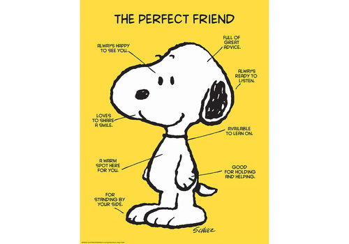 """EUREKA The Perfect Friend Snoopy poster 17x22"""""""