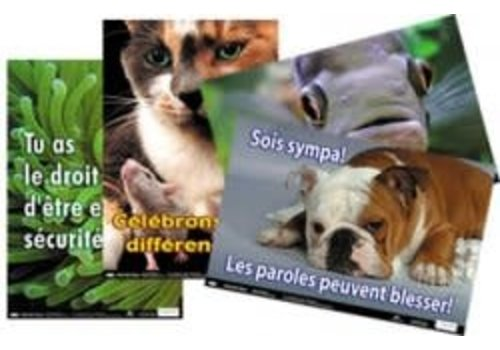 POSTER PALS French Positive Values Set