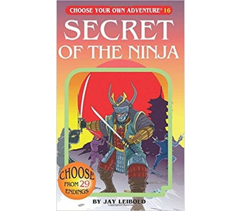 Choose Your Own Adventure Books -Secret Of The Ninja *