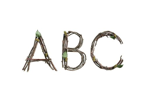 Creative Teaching Press Rustic Twigs Letters 6""