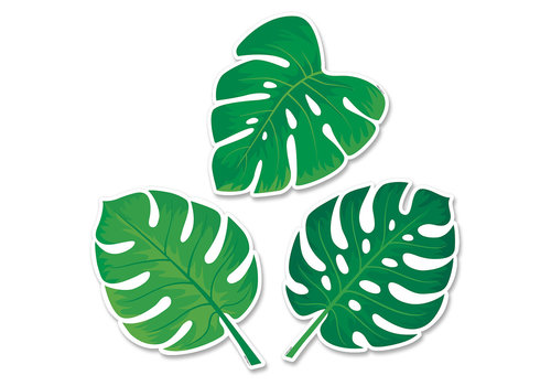 Creative Teaching Press Palm Paradise Monstera Leaves 6 Inch Designer Cut-Outs