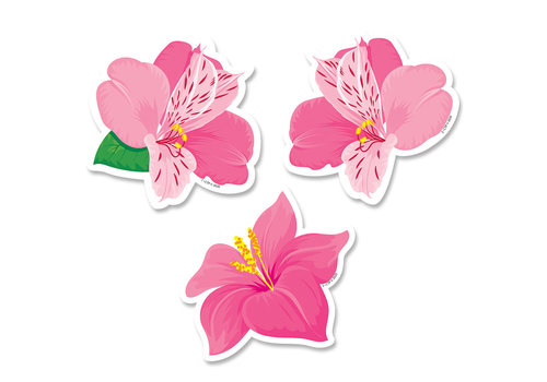 Creative Teaching Press Palm Paradise Pink Blooms 3 Inch Designer Cut-Outs