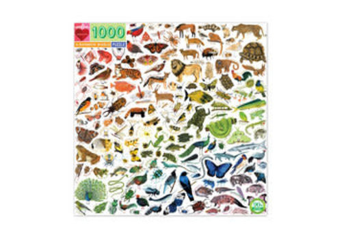 Eeboo A Rainbow World 1000 Piece Puzzle