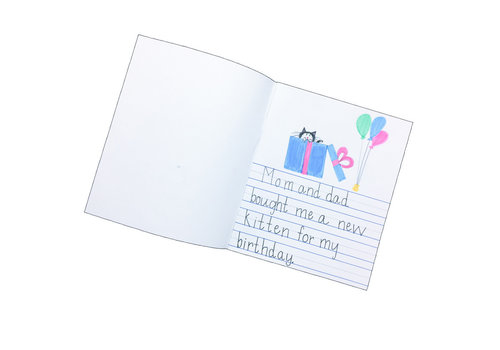 Flip Side Soft Cover Primary Journal, Half Lined