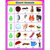 Carson Dellosa Short Vowels Chart