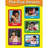 Carson Dellosa Five Senses Chart