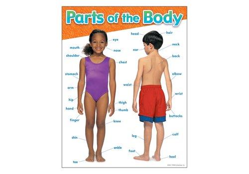 Trend Enterprises Parts of the Body*