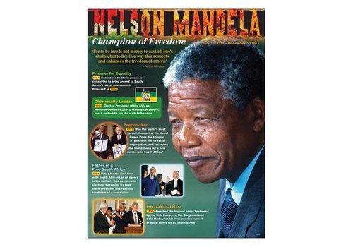 Trend Enterprises Nelson Mandela*