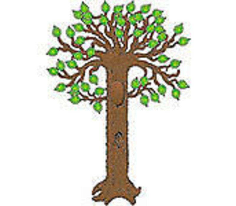 Big Tree Bulletin Board Set *