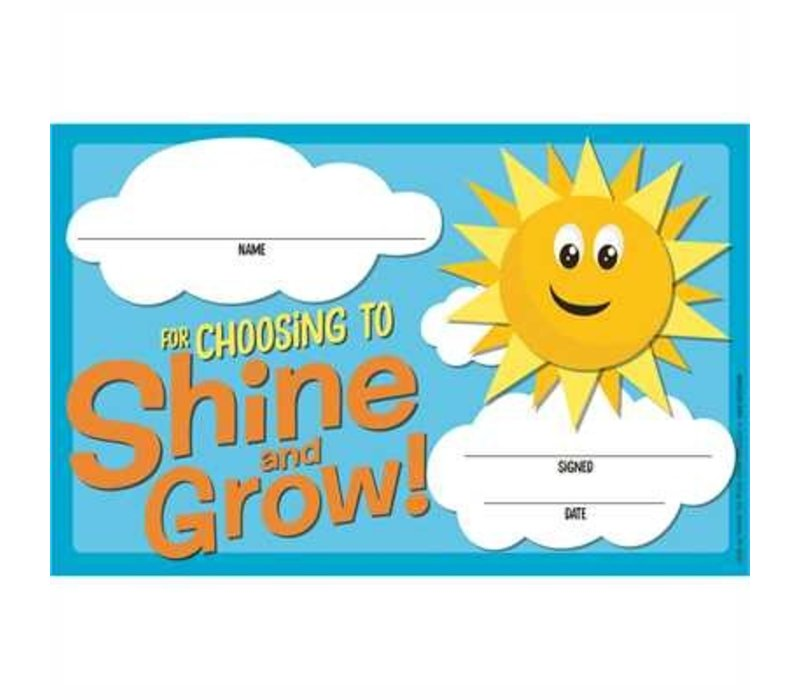 A Teachable Town Choosing to Shine & Grow Recognition Award *