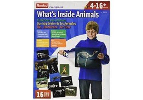 ROYLCO What's Inside Animals *