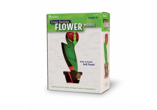 Learning Resources Cross-Section Flower Model