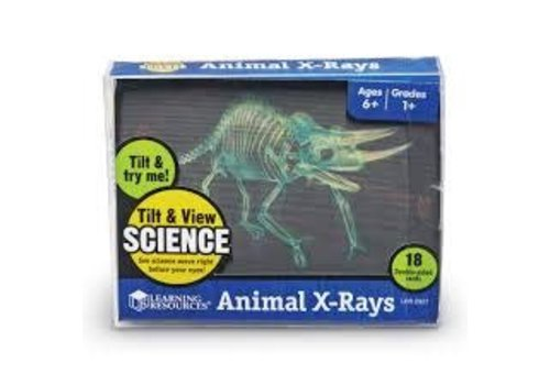 Learning Resources Animal X-Rays *