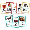 Alphabet & Numbers Instructional Accents