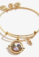 Alex and Ani Harry Potter, Time Turner, RG