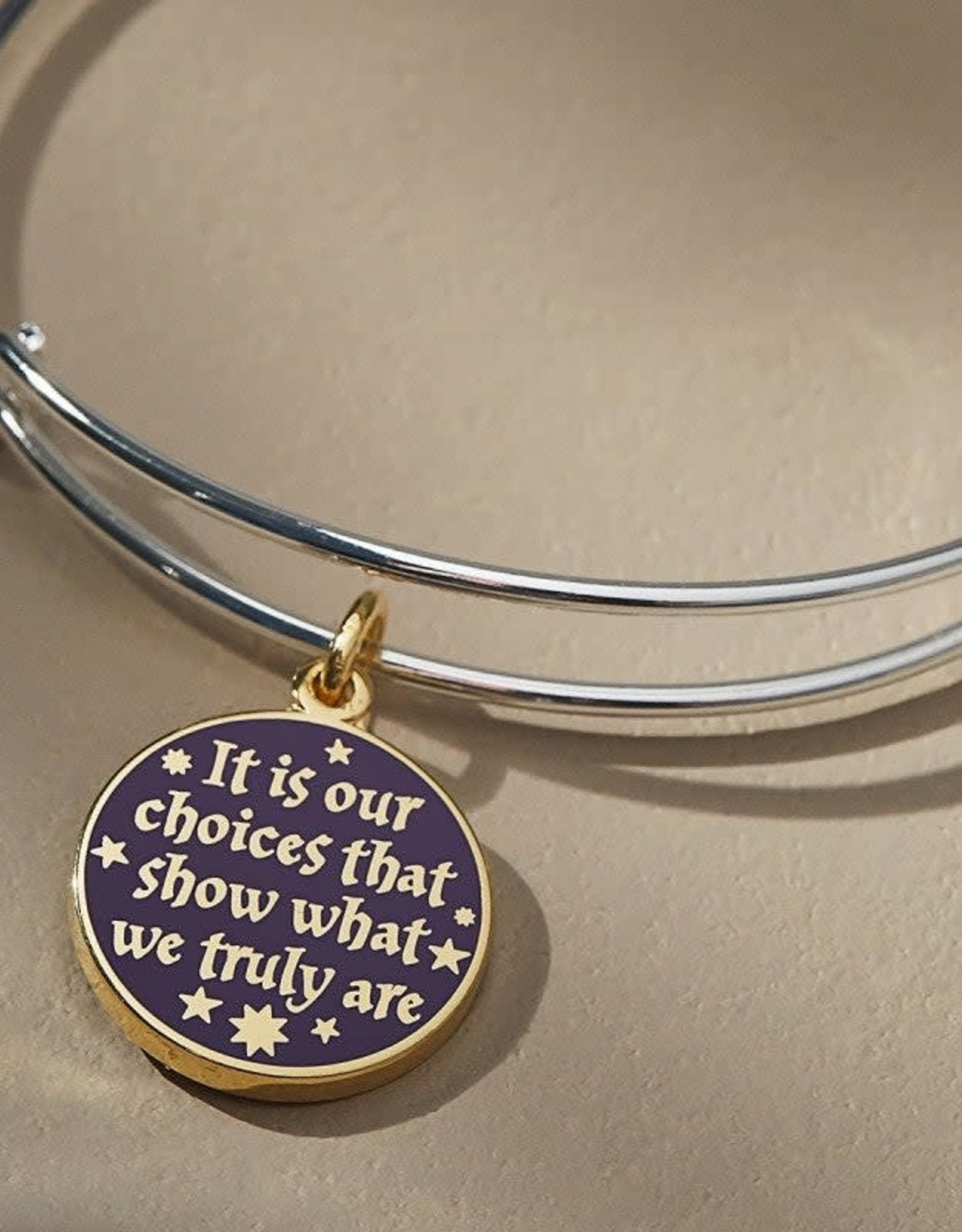 Alex and Ani Harry Potter, Its Our Choices, Two Tone, SS