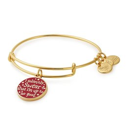 Alex and Ani Harry Potter, Mischief Managed, SG