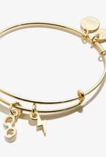 Alex and Ani Harry Potter, Glasses and Lightning Bolt Duo, SG