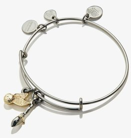 Alex and Ani Harry Potter, Quidditch Duo, Two Tone, Midnight Silver