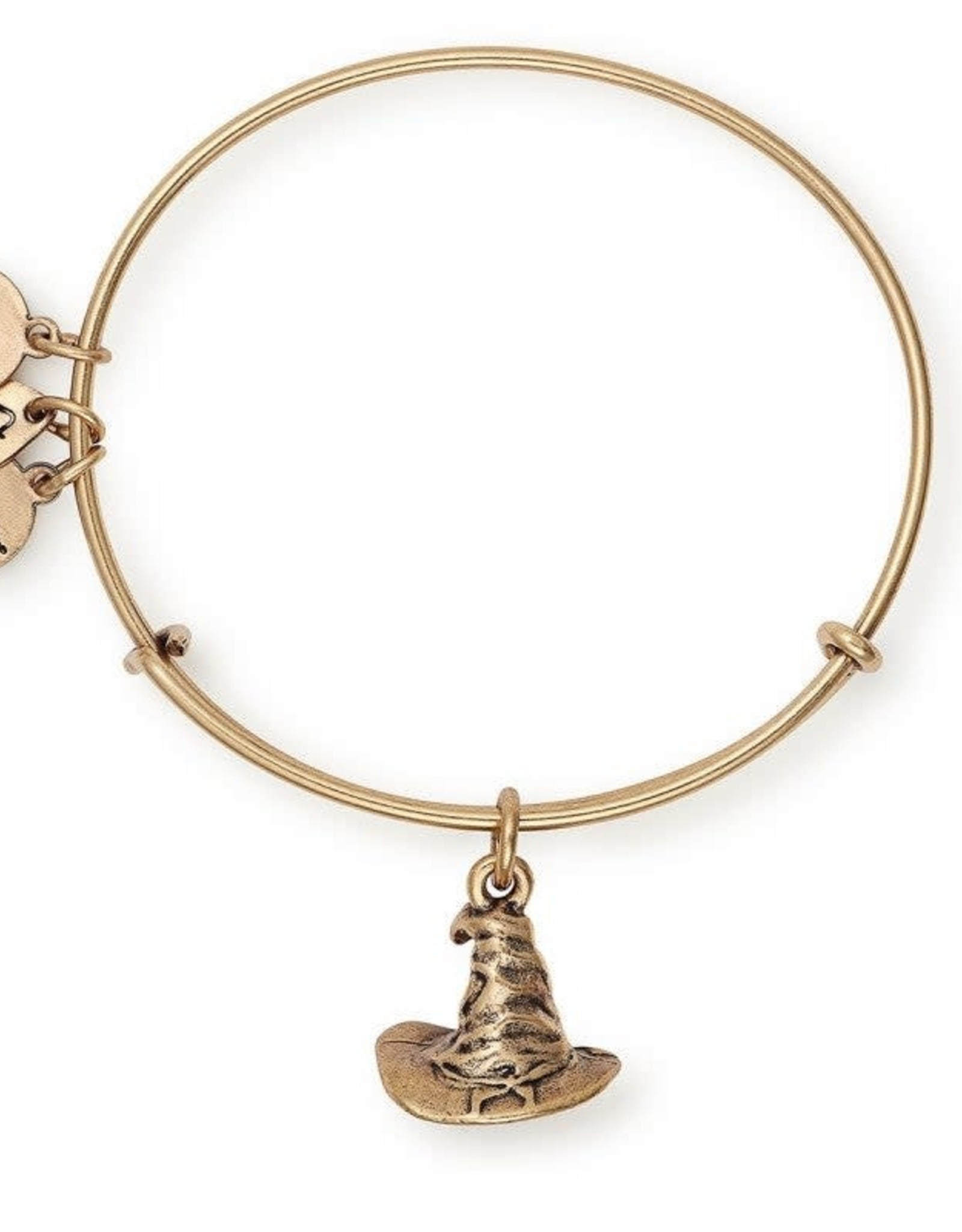 Alex and Ani Harry Potter, Sorting Hat, RG