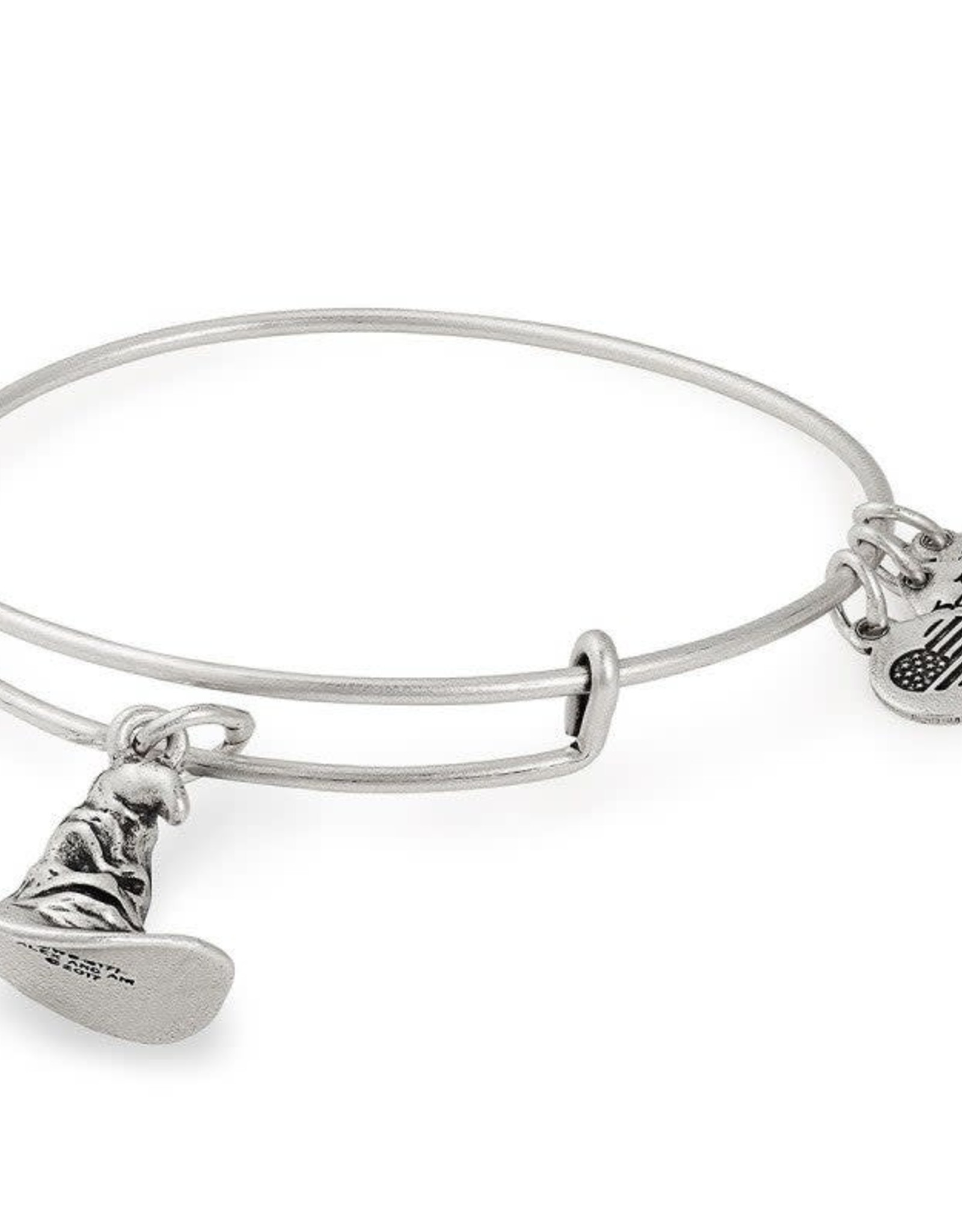Alex and Ani Harry Potter, Sorting Hat, RS
