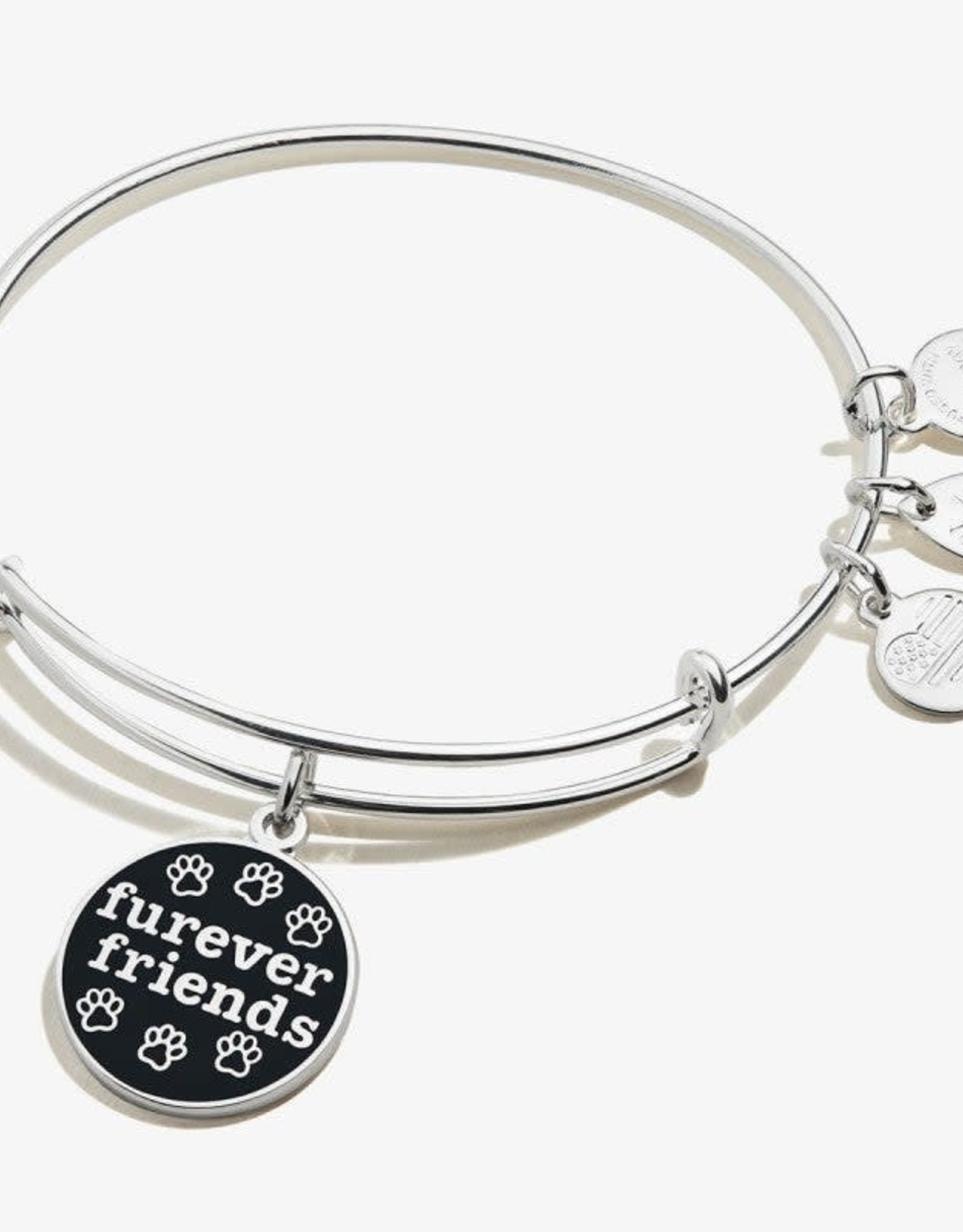 Alex and Ani Color Infusion, Furever Friends, Shiny Silver