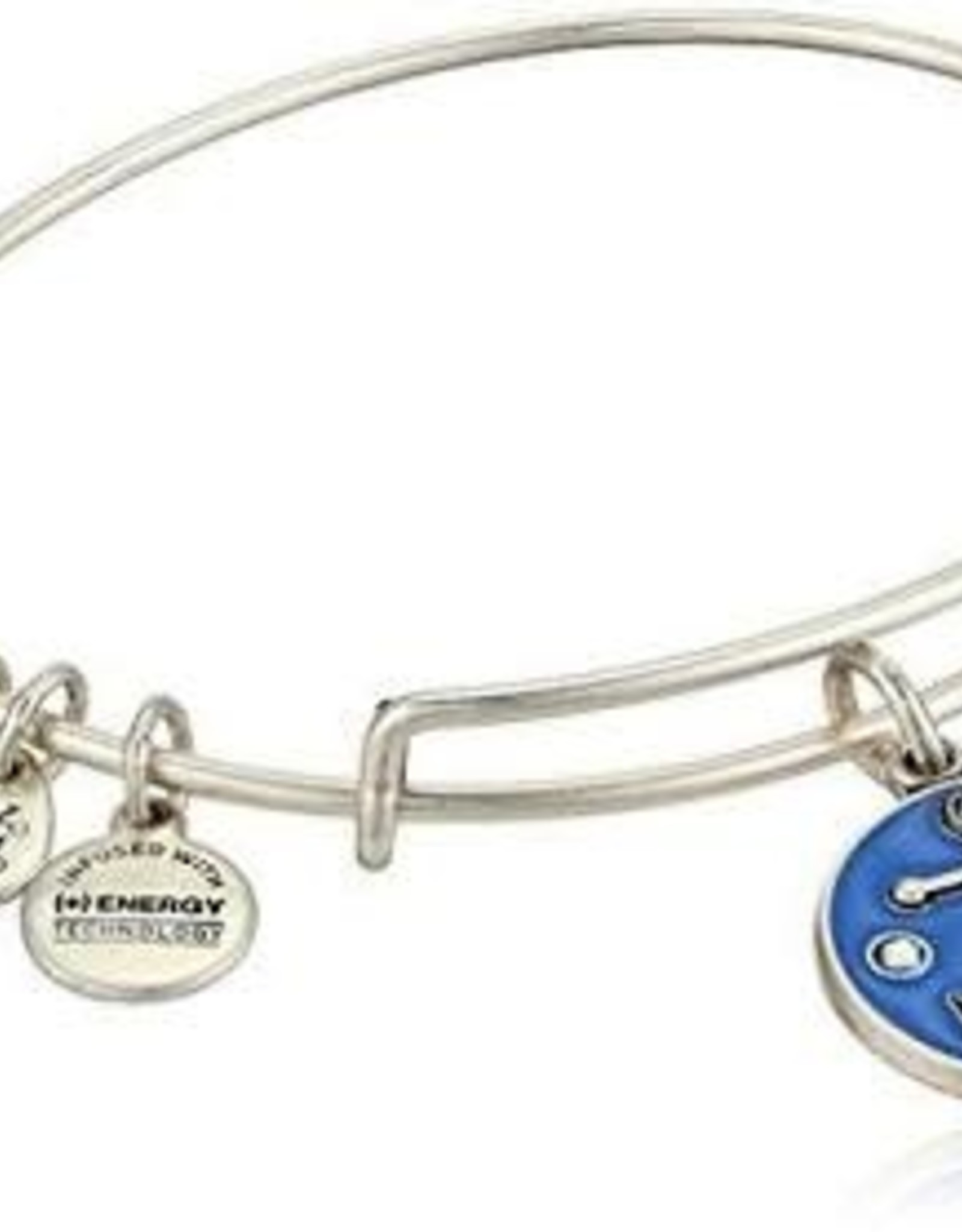 Alex and Ani Color Infusion, Anchor V, RS