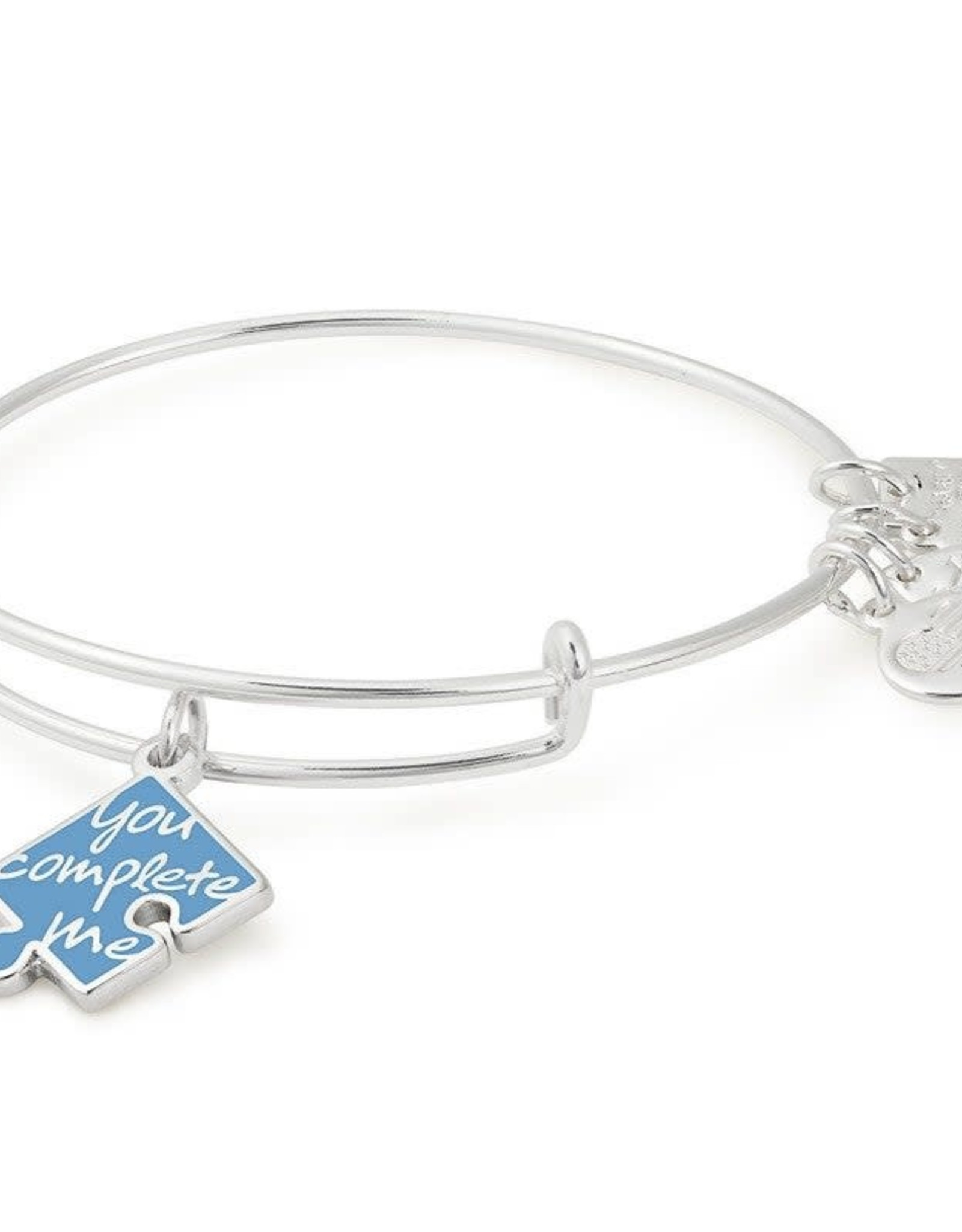 Alex and Ani You Complete Me, Charity by Design, SS