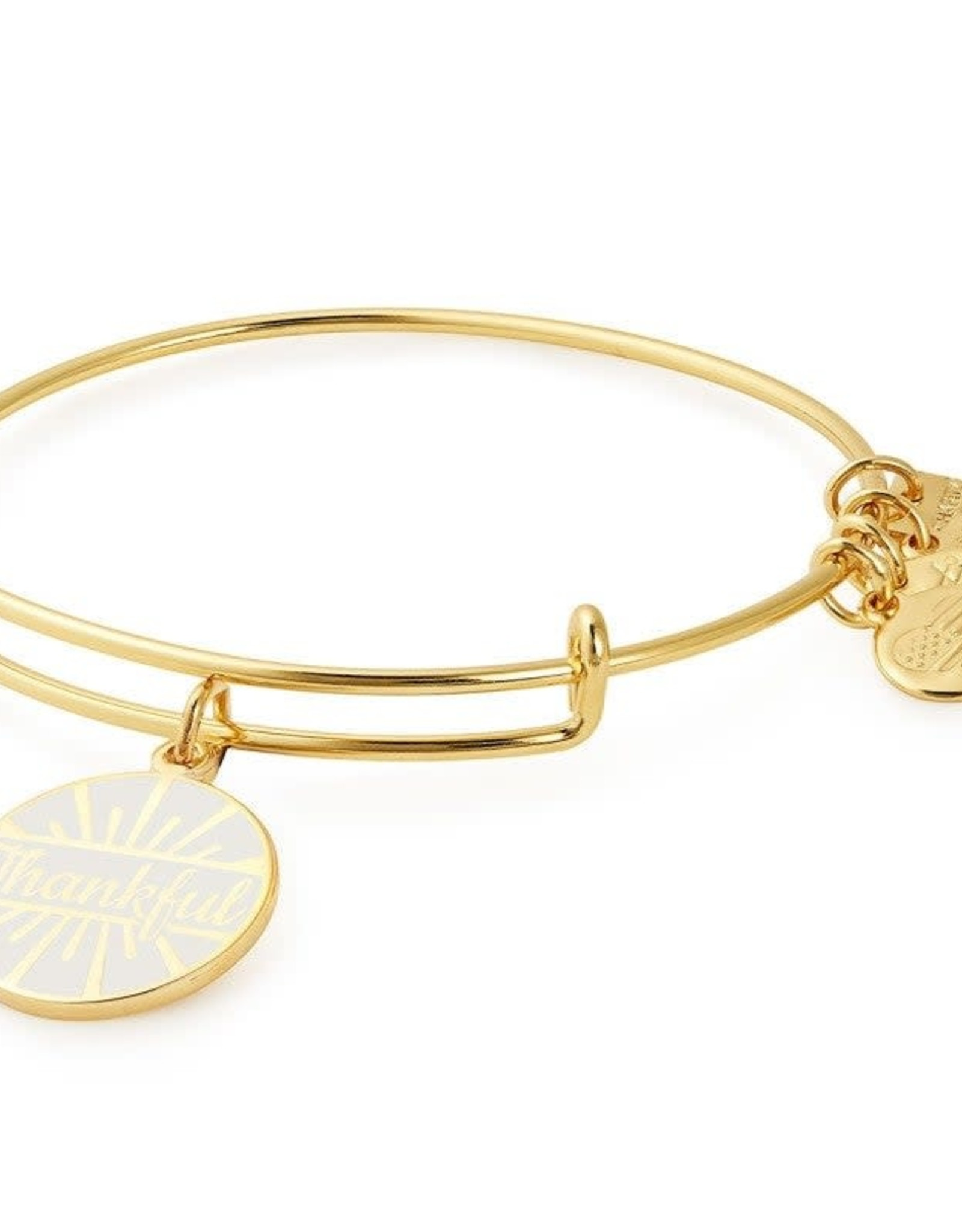 Alex and Ani Today Is A Gift, Charity by Design SG