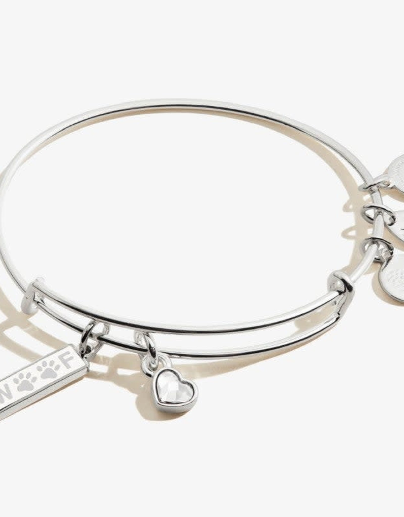 Alex and Ani Alex And Ani, Woof Duo Charm, SS
