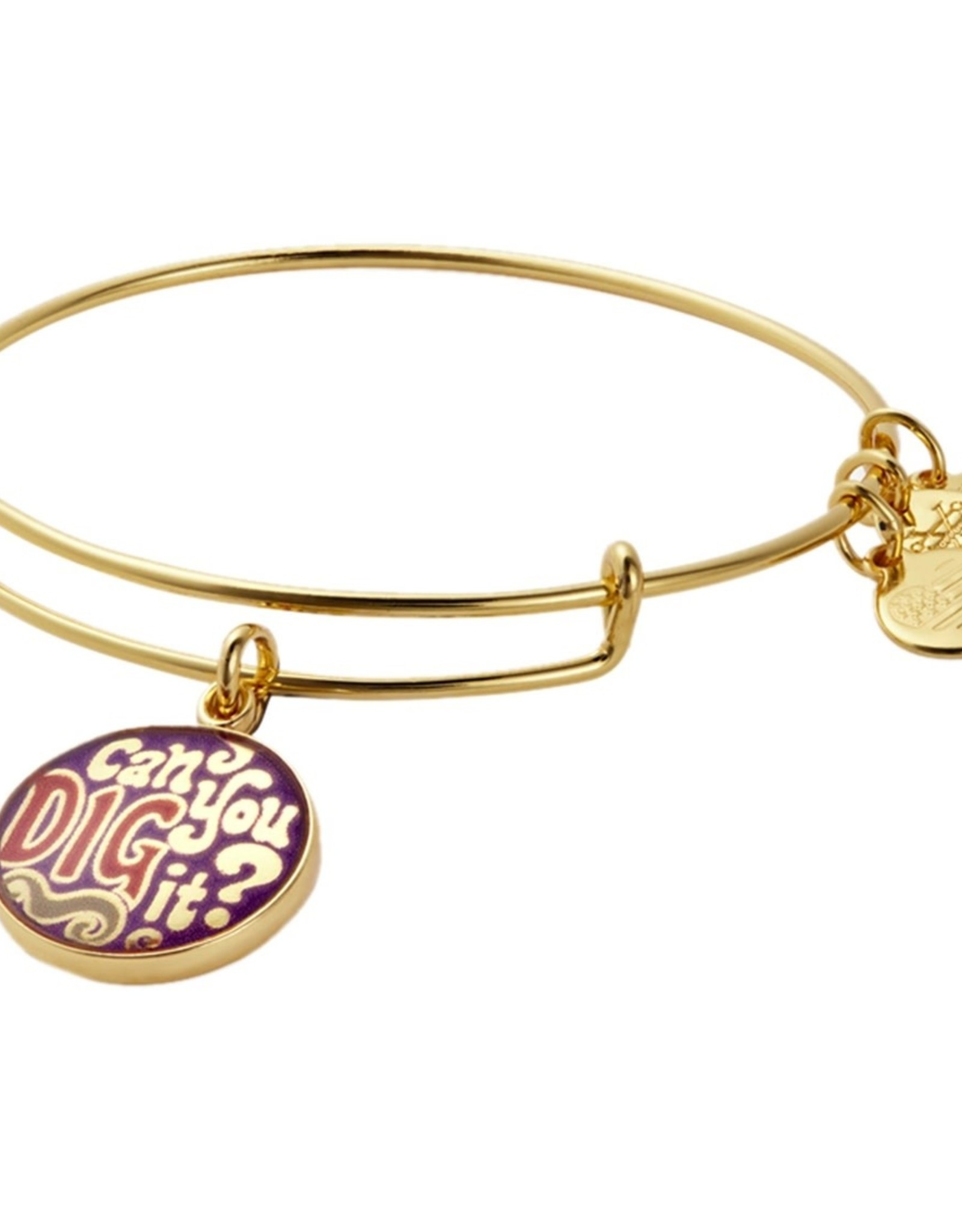 Alex and Ani Words Are Powerful, Can You Dig It FINAL SALE